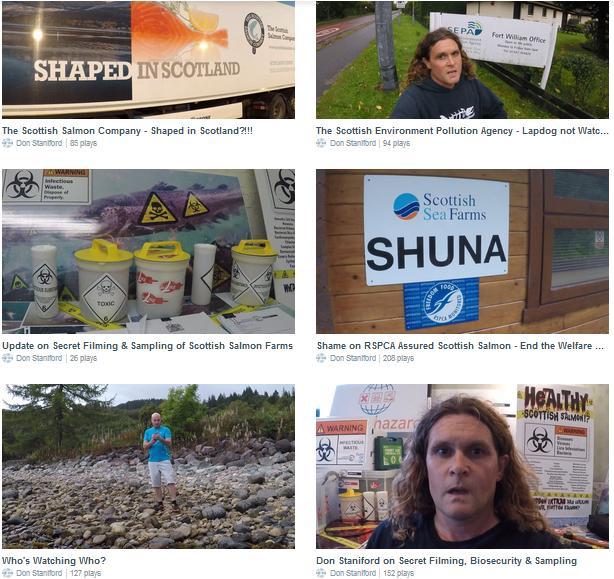 Vimeo collage #2