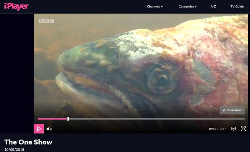 BBC One Show 10 Sept 2018 #4 lice on wild salmon