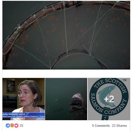 Corin Facebook 12 Sept #2
