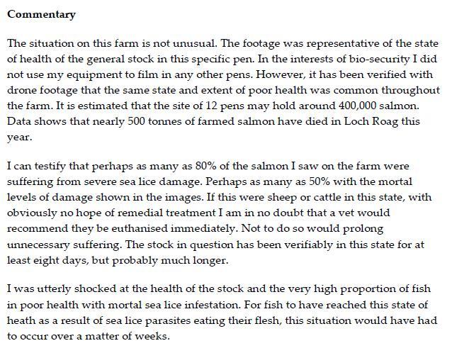 Corin testimony #2