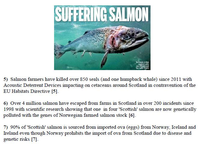 PR Parliament Grills Scottish Salmon 5 Feb 2019 #8