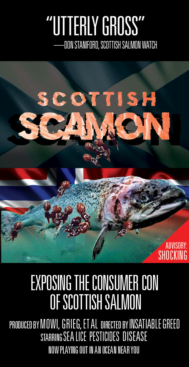 ScamonFilm-Poster1a