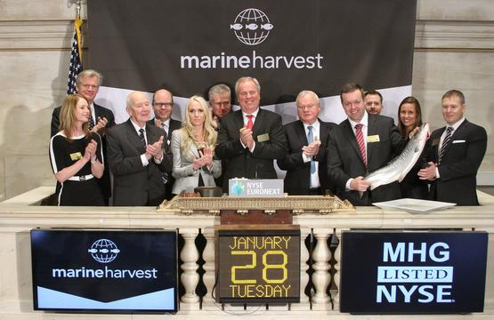 MH NYSE