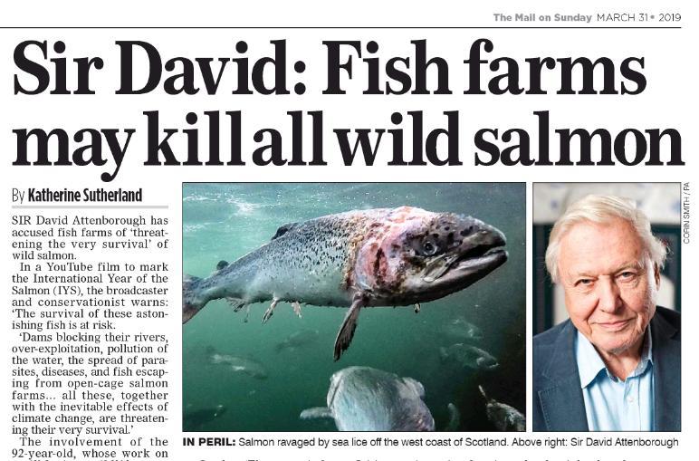 Mail On Sunday 31 March 2019 #1 Sir David