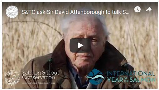 Sir David video