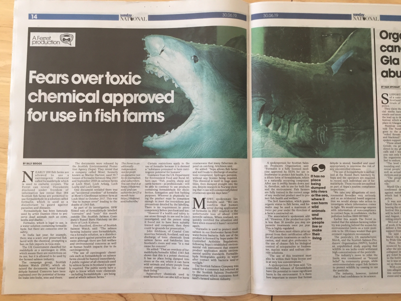 Sunday National 30 June double page