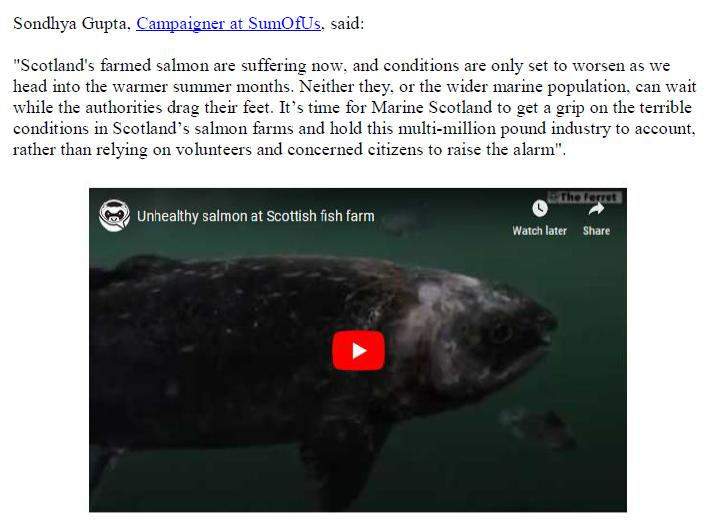 PR Salmonwatch Launched in Scotland 1 July 2019 #6