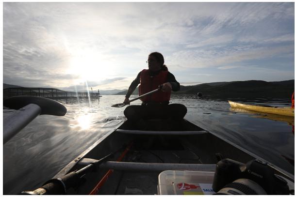 Don #1 Canoe