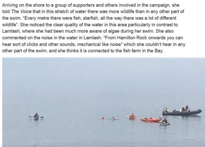 Swim against fish farm #19
