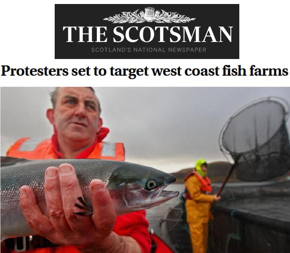 Scotsman 27 Aug 2019 #1