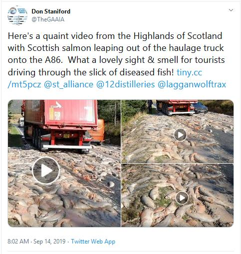William Haughton Facebook video # Don Tweet re tourists