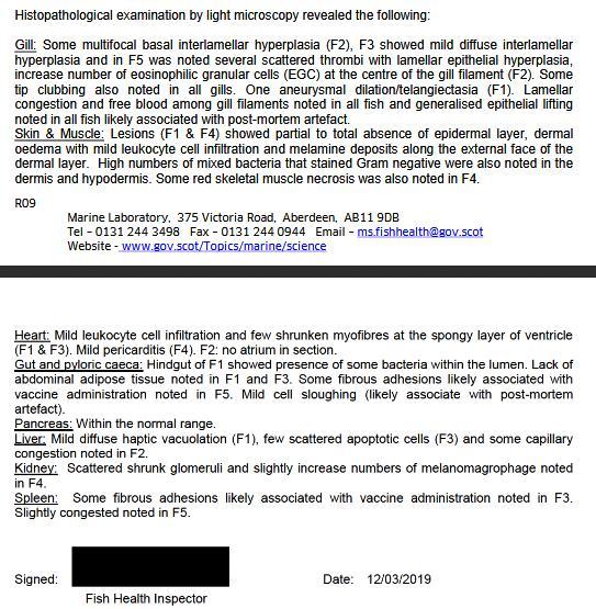 FHI Case Information Strondoir Bay Feb 2019 #10