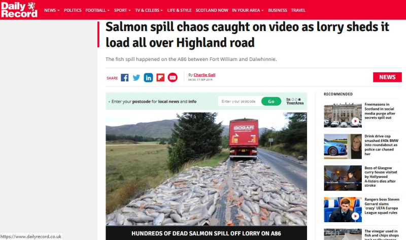 Daily Record on salmon spill 17 September 2019