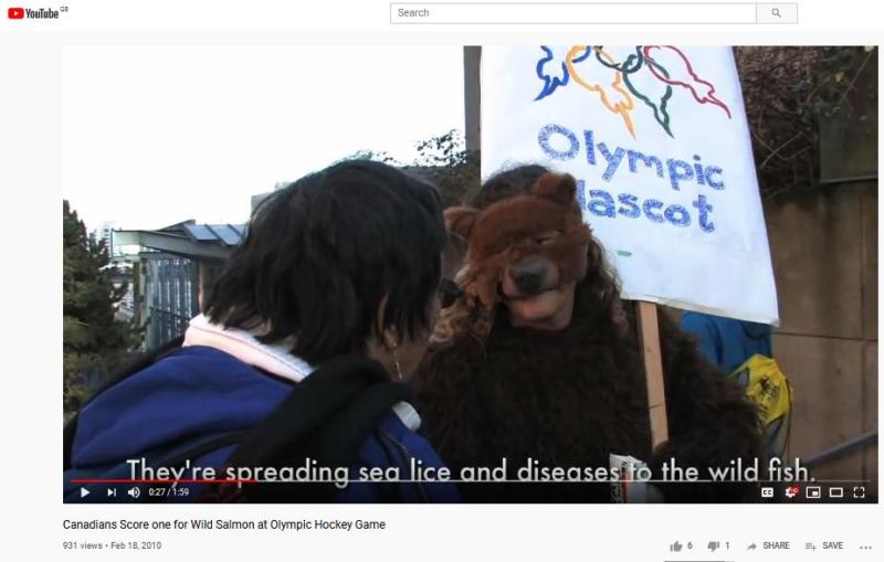 Bear blog #20