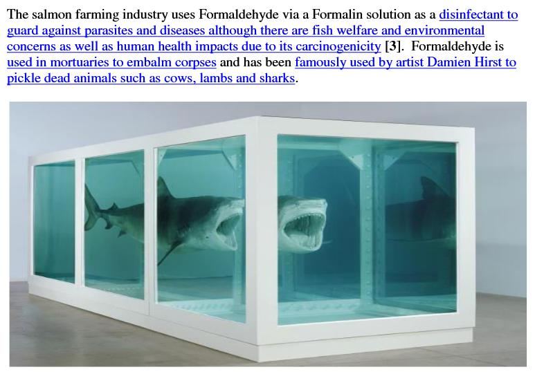 Formaldehyde Shark