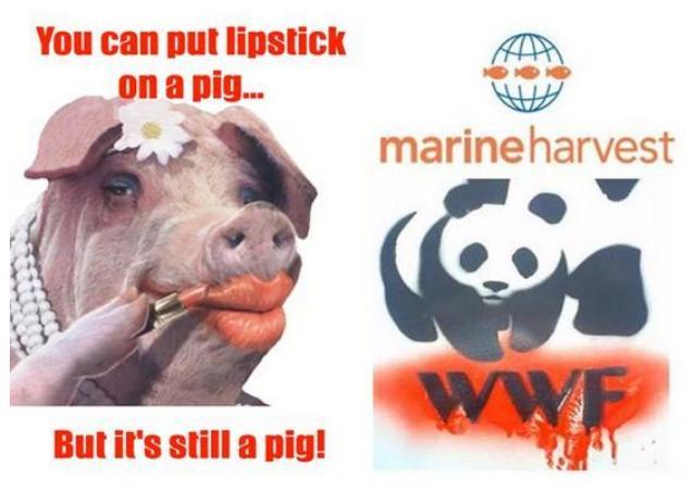 WWF lipstick