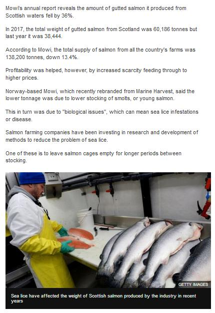 BBC Sea Lice Blamed for Major Fall in Tonnage 28 March 2019 #2
