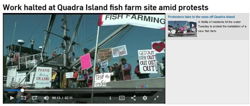 Swim against fish farm #10