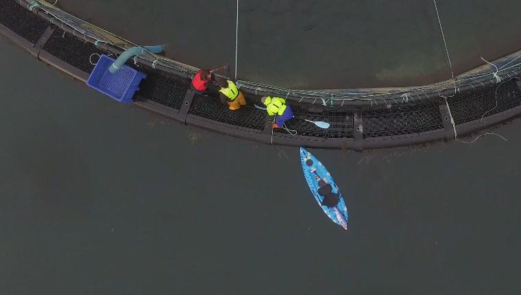 Drone footage from Ardintoul 2 Nov 2019 Photo #18 untying kayak