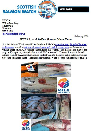 Letter to RSPCA re welfare abuse on RSPCA Assured salmon farms 5 February 2020 #1
