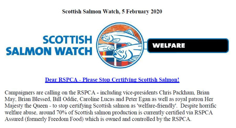 PR RSPCA Asked to Stop Certification 5 Feb 2020 #1