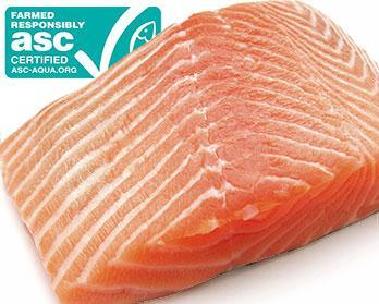 ASC salmon
