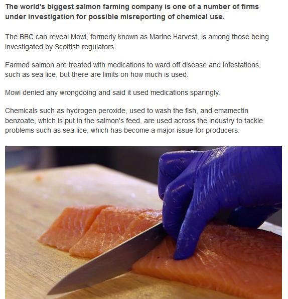 BBC Chemicals #2