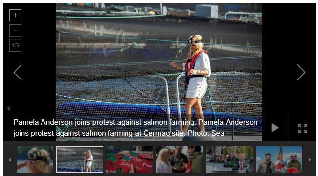 Swim against fish farm #12