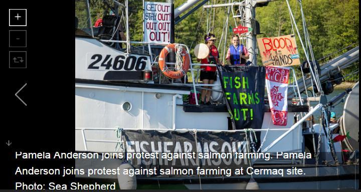 Swim against fish farm #13