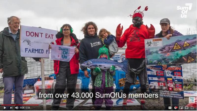 SumOfUs video 43 000 photo