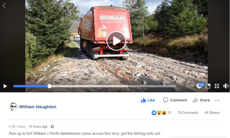 William Haughton Facebook video #1