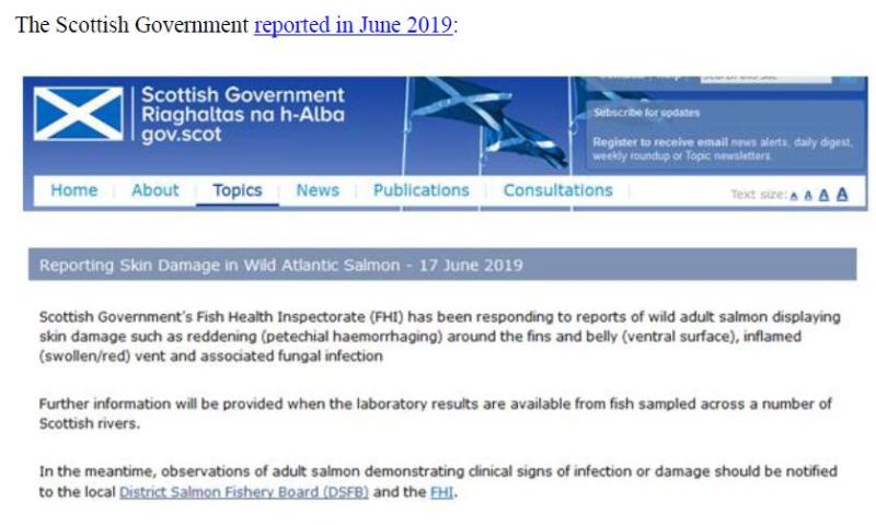 PR Sick Scottish Salmon 30 Sept 2019 #12 SG