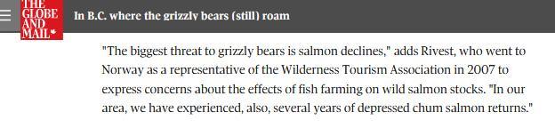 Bear blog #9