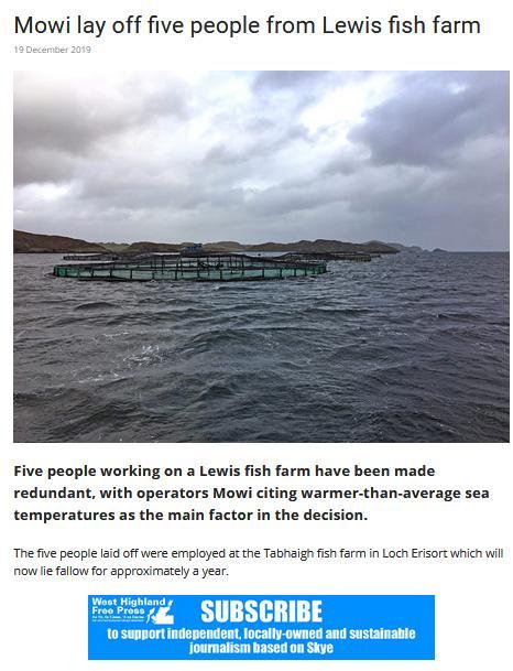 Tabhaigh WHFP job losses Dec 2019