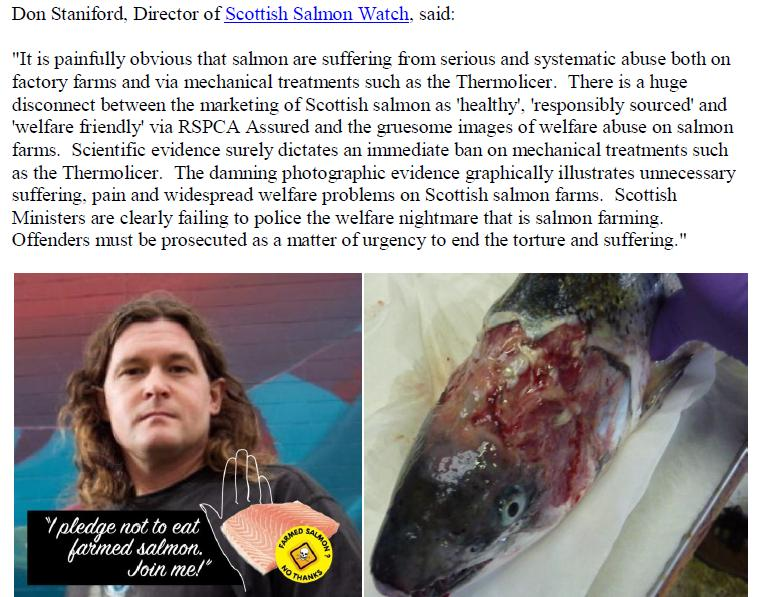 PR Welfare Abuse on Scottish Salmon Farms 2 Feb 2020 #10