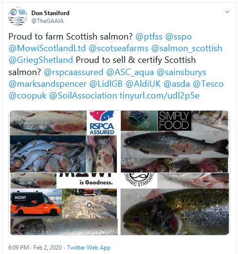 The Faces of Scottish Salmon Feb 2020 Tweet 2 Feb 2020 #2