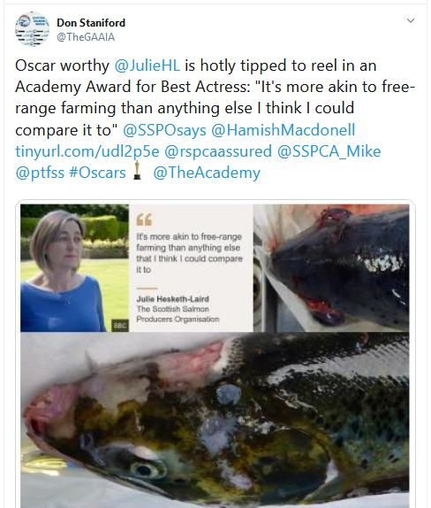 The Faces of Scottish Salmon Feb 2020 Tweet 3 Feb 2020 Julie Oscar #1