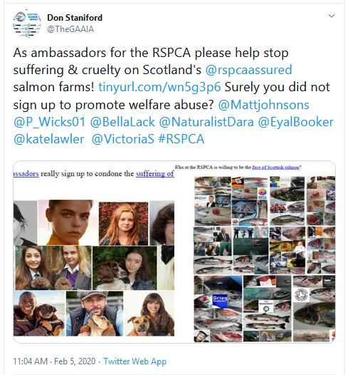 PR RSPCA Asked to Stop Certification 5 Feb 2020 Tweet #4 Ambassadors