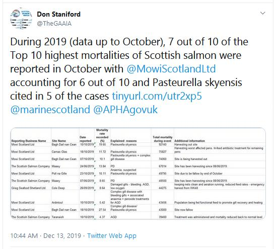 SW Morts up to Oct 2019 Worst Tweet