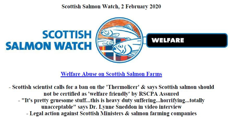 PR Welfare Abuse on Scottish Salmon Farms 2 Feb 2020 #1