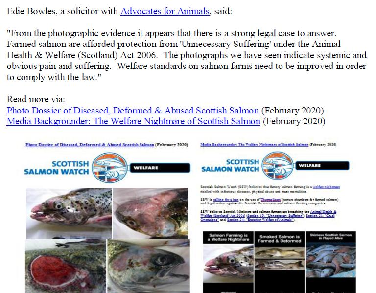 PR Welfare Abuse on Scottish Salmon Farms 2 Feb 2020 #12