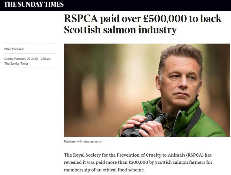 Sunday Times 9 Feb 2020 RSPCA online version #1