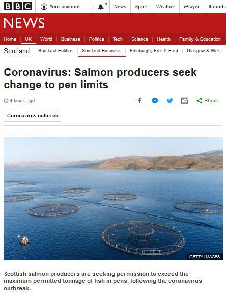 Coronavirus BBC 12 March 2020