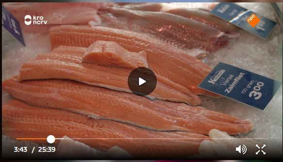 Dutch TV March 2020 #8 farmed salmon in fishmonger