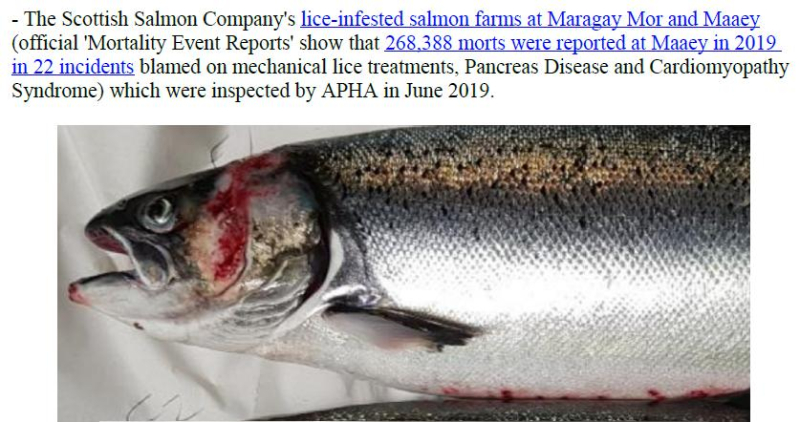 PR Censored Welfare Abuse on Salmon Farms 23 April 2020 #6