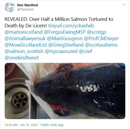 PR Deaths due to De-licers 10 June 2020 Tweet
