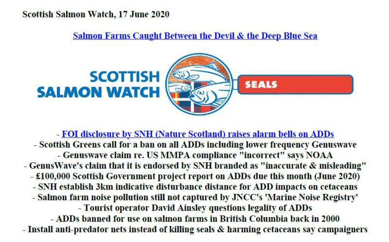 PR Caught Between the Devil & Deep Blue Sea 17 June 2020 #1
