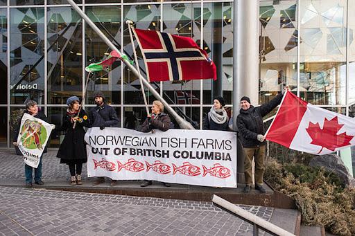 Norwegian fish farms go home