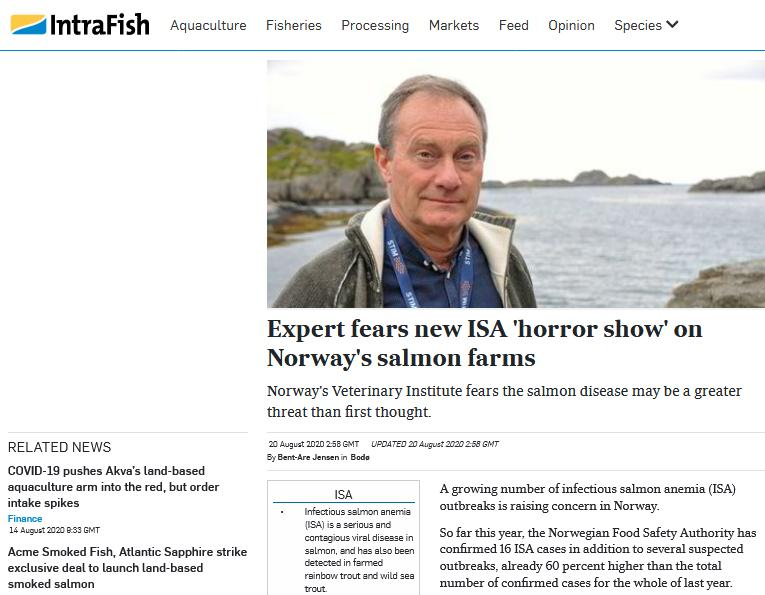 Intrafish ISA Horror Show 20 August 2020 #1