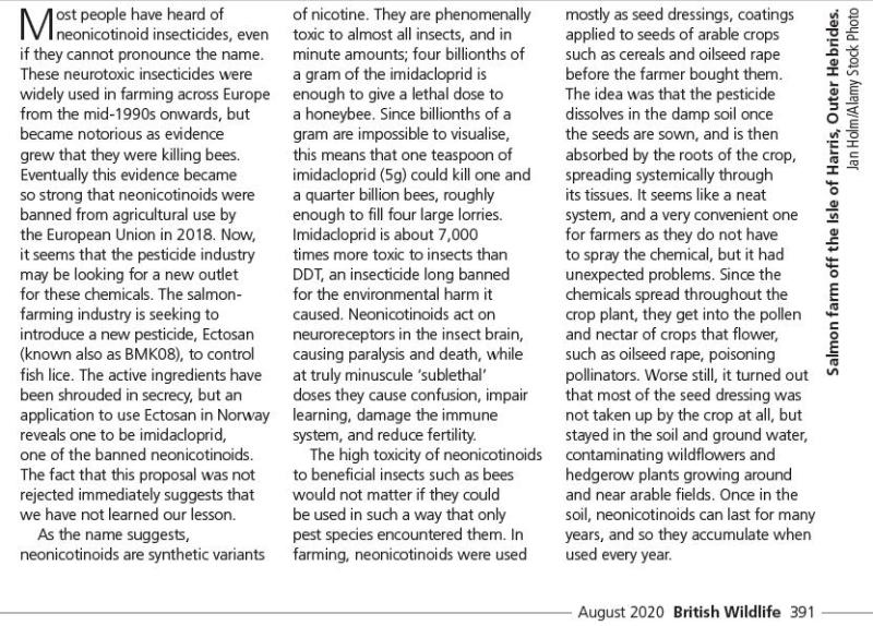 British Wildlife August 2020 #2